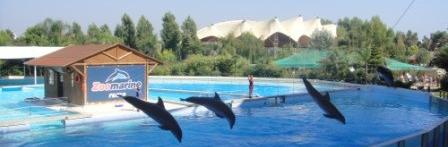 Water Parks in Rome Water Park Rome Italy